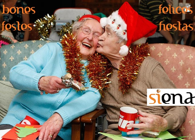 SIENA us desitja Bones Festes!!  /  ¡¡SIENA os desea Felices Fiestas!!